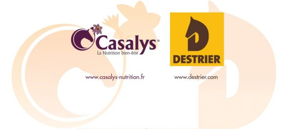 TERRENA – DESTRIER – CASALYS