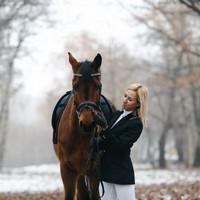 Equipement du cheval et du cavalier
